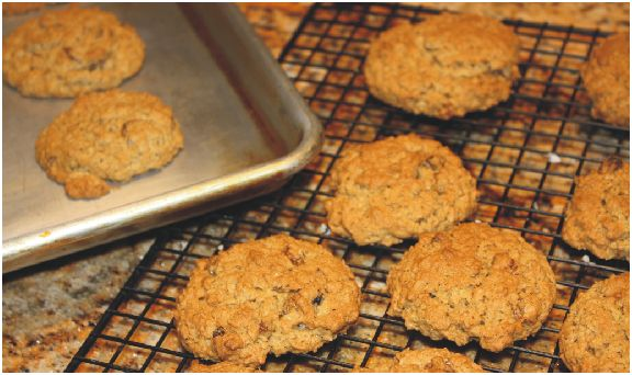 Sunday Sweet Sunday Share: Oatmeal Raisin Crisp Cookies