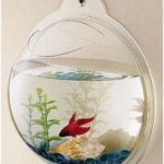 Wall Mount Beta Fish Bubble Aquarium Tank For $17 Shipped