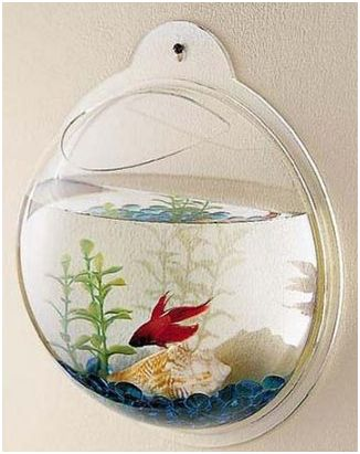 Wall Mount Beta Fish Bubble Aquarium Tank