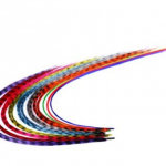Feather Hair Extensions for $7.50 Shipped