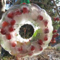 Kid's Christmas Activities | Ice Wreath