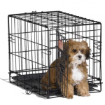 Pet Travel Crate as low as $22.13 shipped