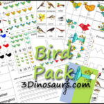 Free Bird Printable Pack