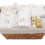 Burts Bees Baby Essentials Basket for $35 Shipped