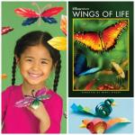 Kids Crafts | Birds, Flowers, Butterflies and More