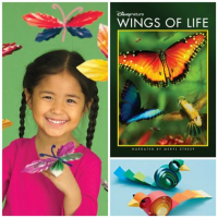 Kids Crafts | Birds, Flowers, Butterflies and More