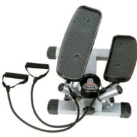 Sunny Twister Stepper For $53.99 Shipped