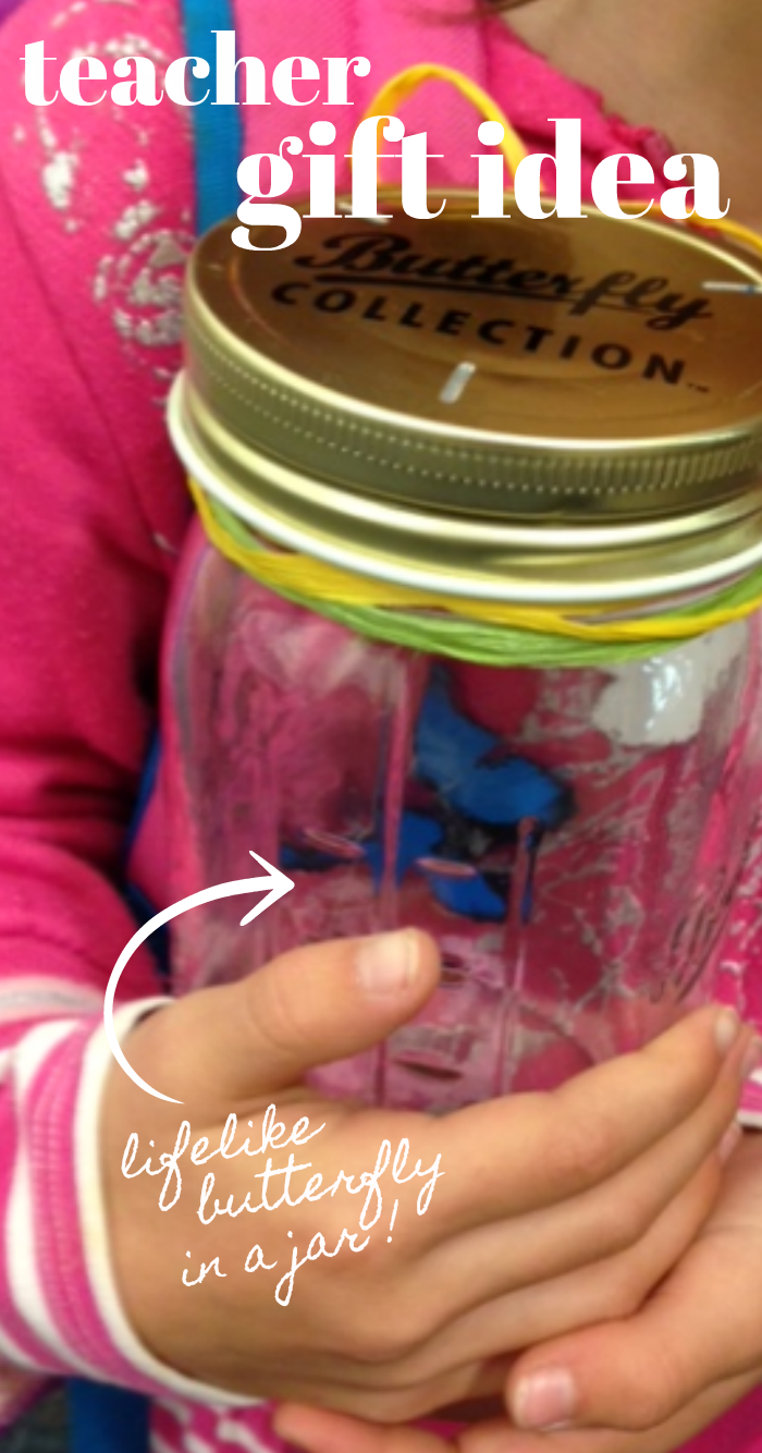 Such a sweet teacher gift idea: Butterfly in a Jar
