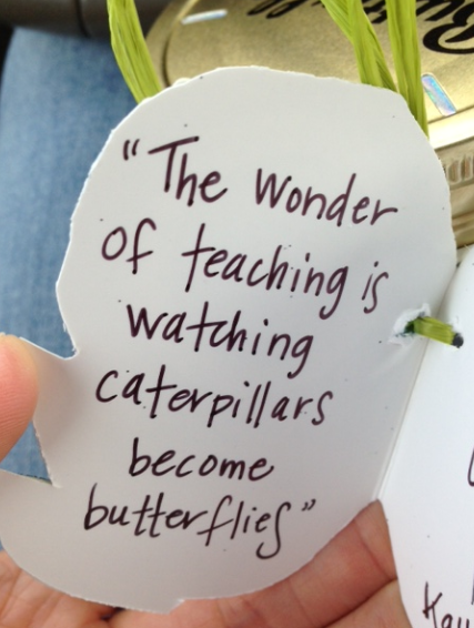 wonder of teaching
