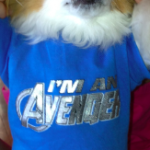 Super Savings at PetSmart + Marvel and DC Comic Merchandise Giveaway!