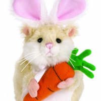 Webkinz Carrots Mazin Hamster For $5.99 Shipped