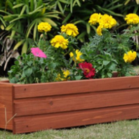 Traditional Window Box For $18.99 Shipped