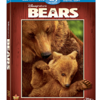 Disneynature's Bears releases on DVD Tomorrow, August 12th!