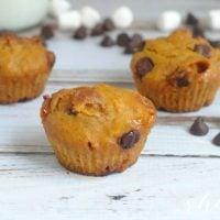 Pumpkin S'more Muffin Recipe