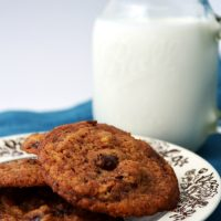Chocolate Chocolate Chip Cookies Recipe