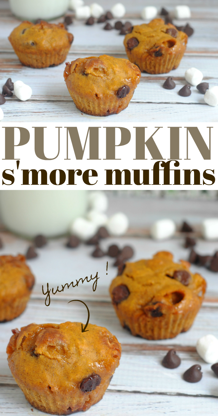 Pumpkin S'more Muffins recipe is perfect for Fall!