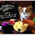 PetSmart Halloween 3
