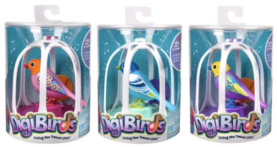 digi birds