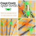 spiderstraws