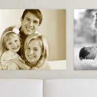 Vistaprint Canvas Prints Save 50% Off