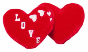 Heart Pillow Kids Sewing Kit