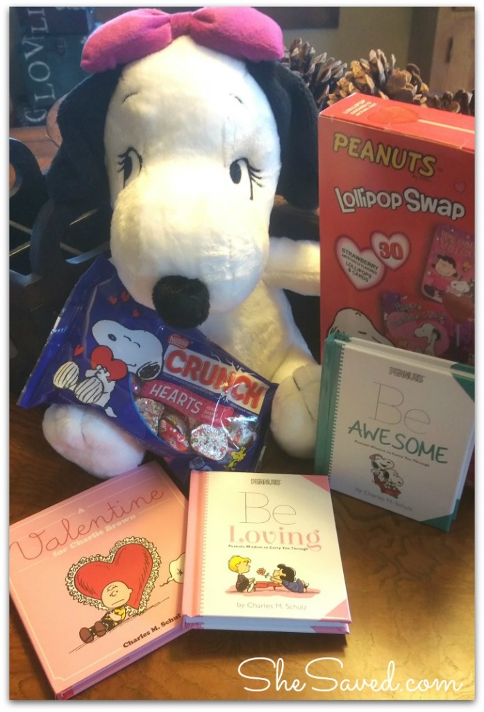 Snoopy Prize Package