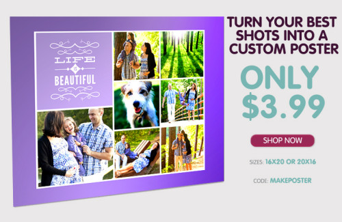 16X20 Custom Photo Poster For $3.99