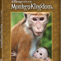 Pre-Order Disneynature Monkey Kingdom on DigitalHD, DMA, and Blu-ray Combo Pack