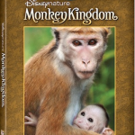 Disneynature MONKEY KINGDOM Available September 15th!
