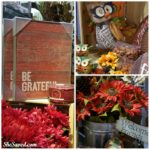 Find Your Fall Decor at Gordmans