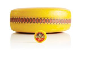 HGG 15 Jarlsberg_Mini Cheese