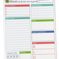 Organizing Life: Daily Planners and 2016 Calendars