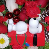 Send a Teleflora Snoopy Bouquet! (+Giveaway!)