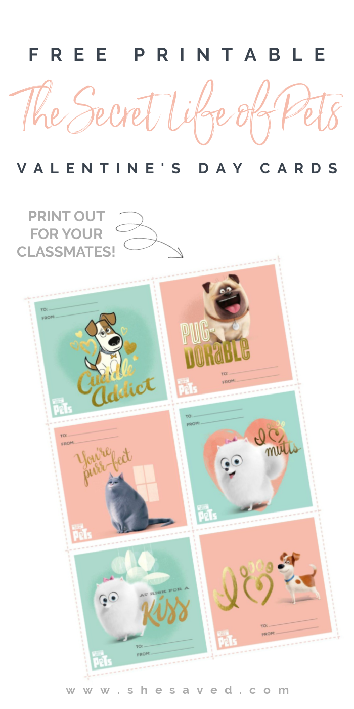 Free Printable The Secret Life of Pets Valentines Day Cards for Kids!