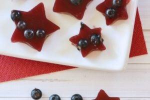 Fruity Gelatin Snack Bites