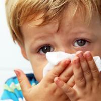 Attack Allergy Season with Scotties! #ScottiesEverydayComfort
