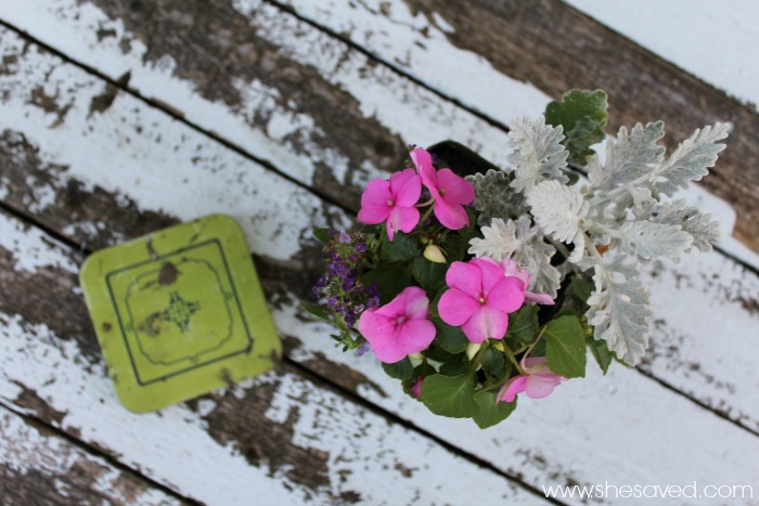 Make a cute tin planter by repurposing a vintage tin.