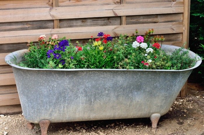 Bathtub Planter in Garden
