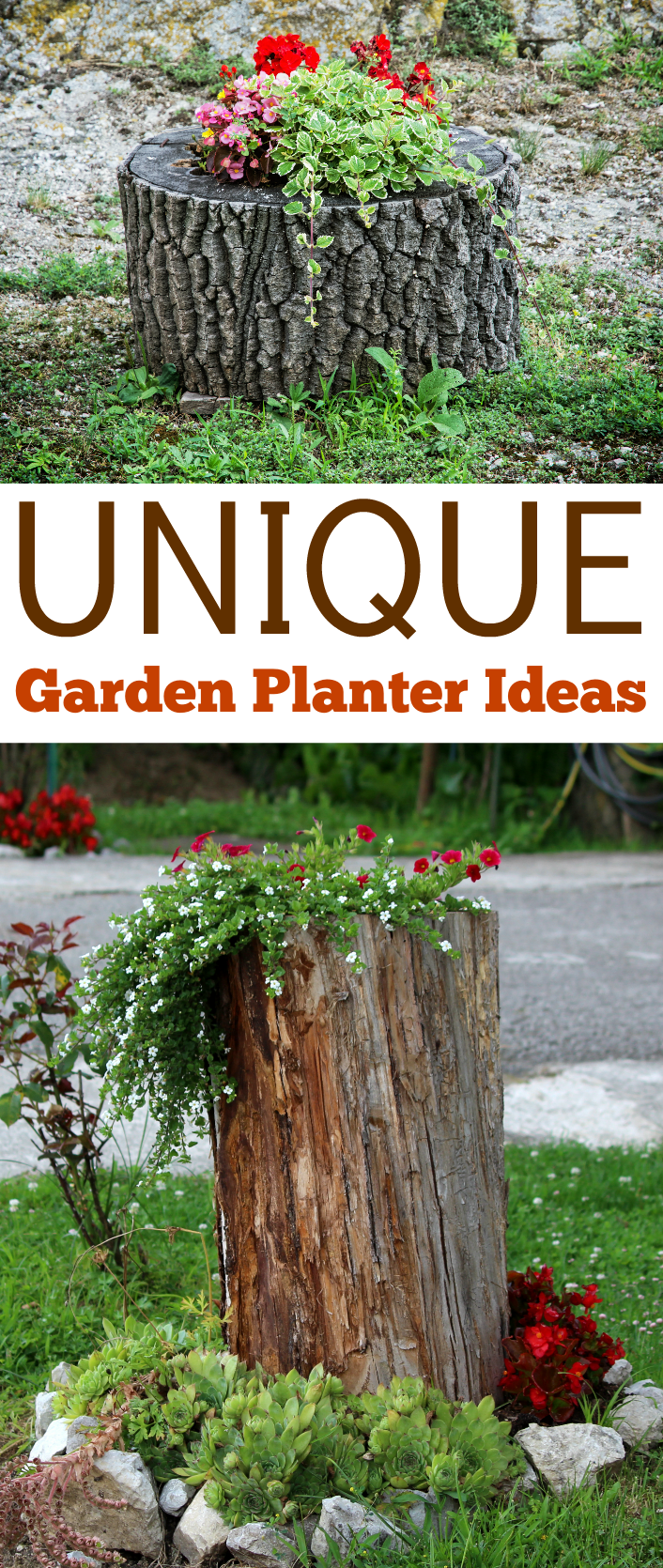 Unique garden planter ideas