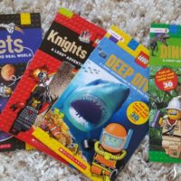 New LEGO Nonfiction Books for Young Readers