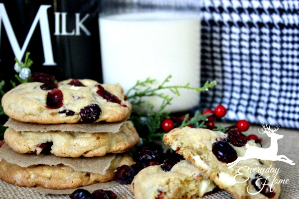 cranberry-pecan-white-chocolate-chunk-cookies-from-the-everyday-home-blog