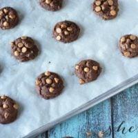 Chocolate Peanut Butter Cookie Recipe
