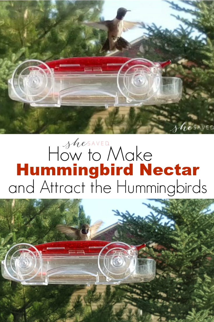 Easy instructions on How to Make Hummingbird Nectar along with some great ideas for attracting Hummingbirds to your yard!