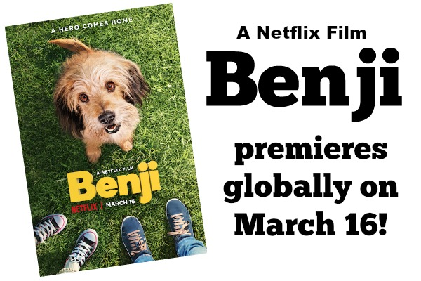 Benji is BACK! A Netflix Original Film: BENJI #SteamTeam