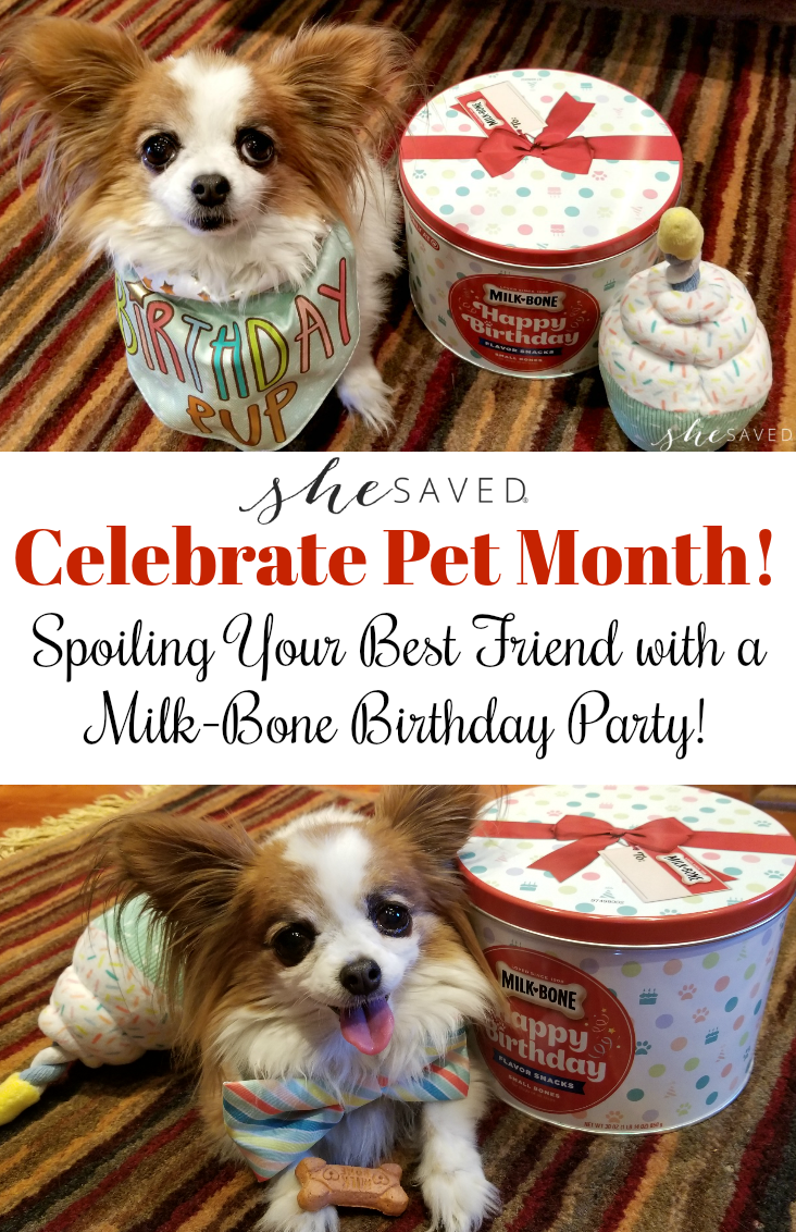 Celebrate Pet Month by spoiling Your Best Friend with a Milk-Bone Birthday Party!