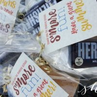 S'more Fun! Last Day Teacher Gift Idea (+ FREE Printable)
