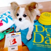 DOG DAYS Movie in Theaters August 8th PLUS Giveaway!