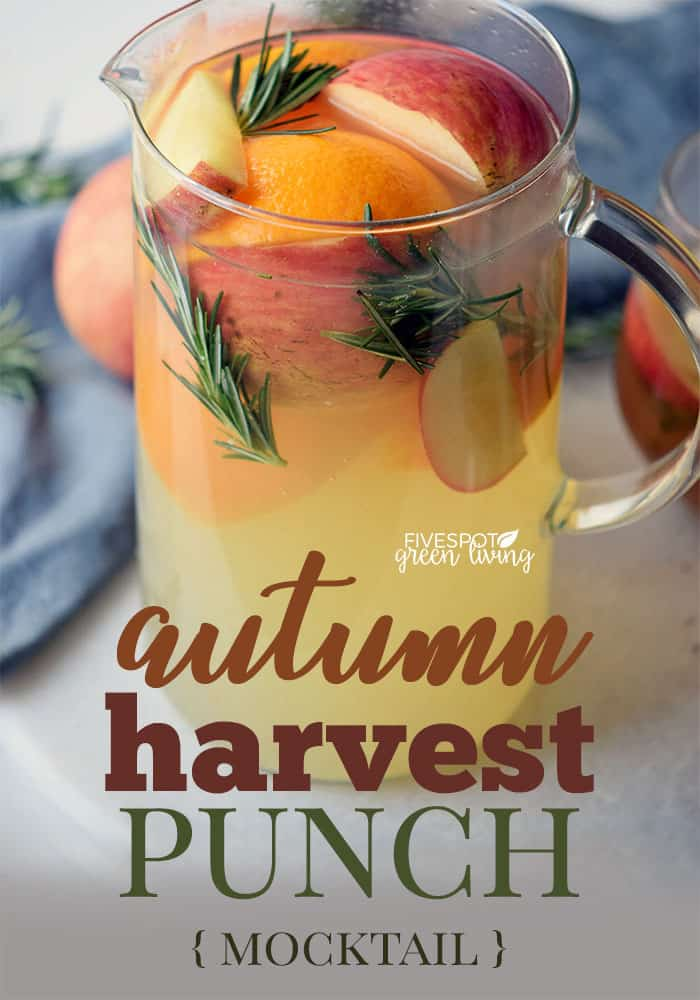 autumn harvest punch fall drink recipes