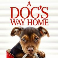 A Dog's Way Home Available TODAY on Digital Download + Giveaway