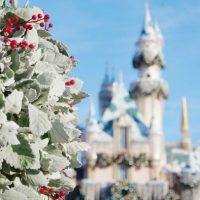 What to See and Do During the Holidays at Disneyland Resort